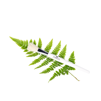 Treatment Brush